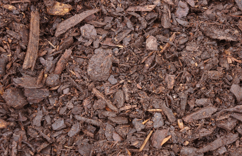 Double Ground Pine Mulch