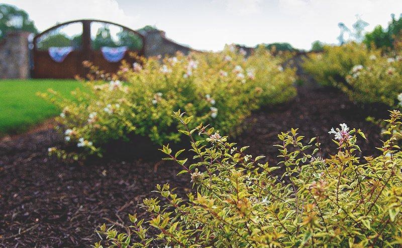 Commercial Landscaping - Landscape Company In South Carolina - Collins Landscape